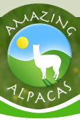 Amazing Alpacas home page
